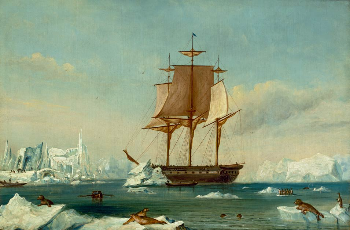 Vincennes in Disappointment Bay, Antartica 1840